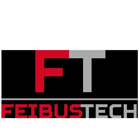 Feibus Tech Logo